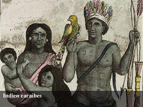 Indien-caraibes